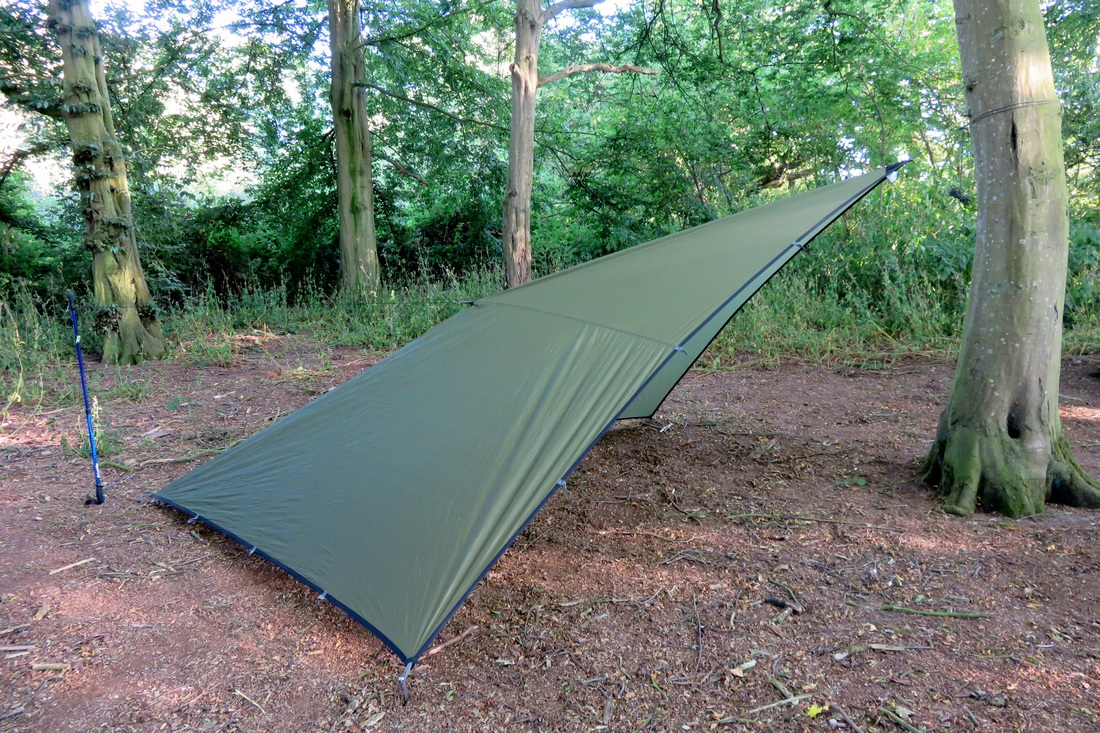 Tarp in woods