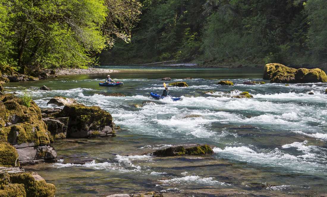 Two kayakers paddle down minor rapids on a clear river between trees