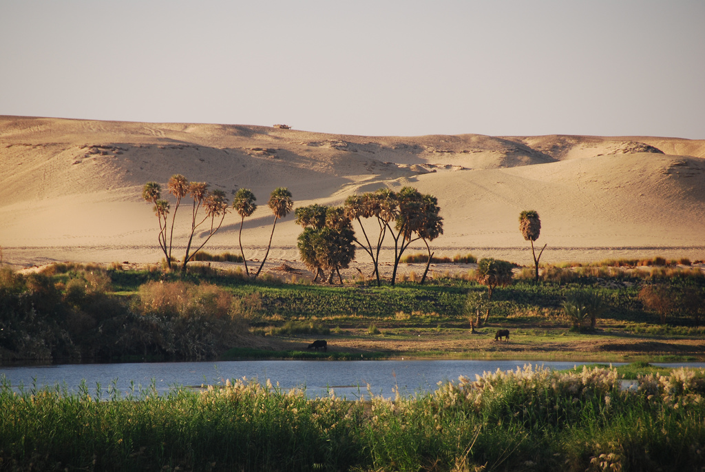 Landscape: foreground with river and greenery, background of huge sand dunes