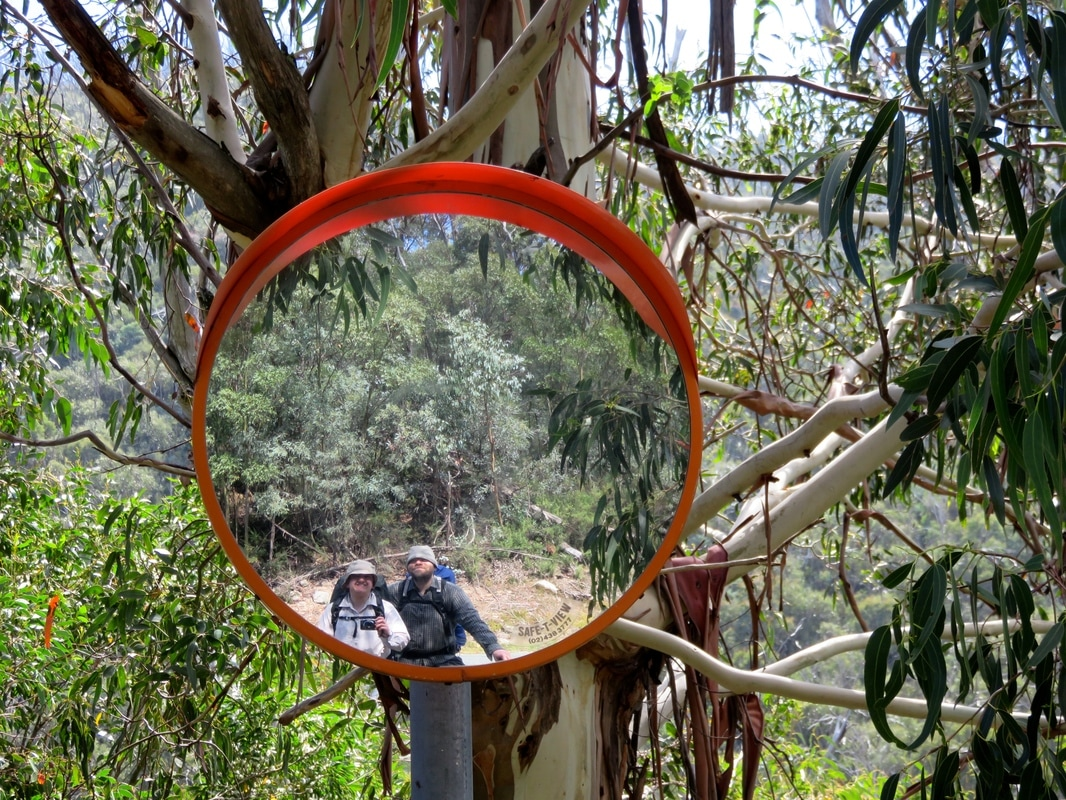 People reflected in round mirror on tree