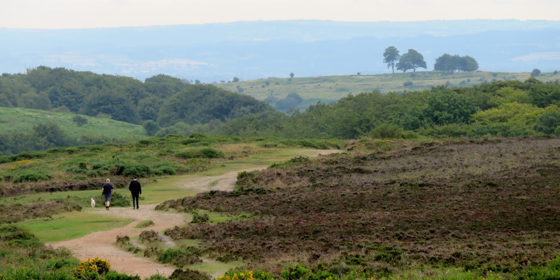 moorland and people on path