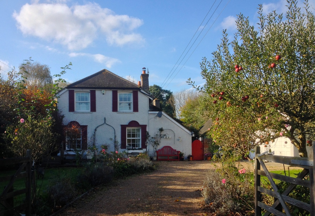 House and apple tree