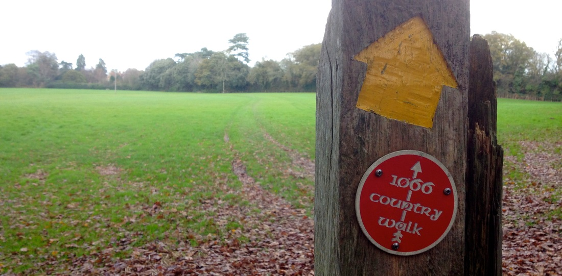 Waymarkers and autumn leaves