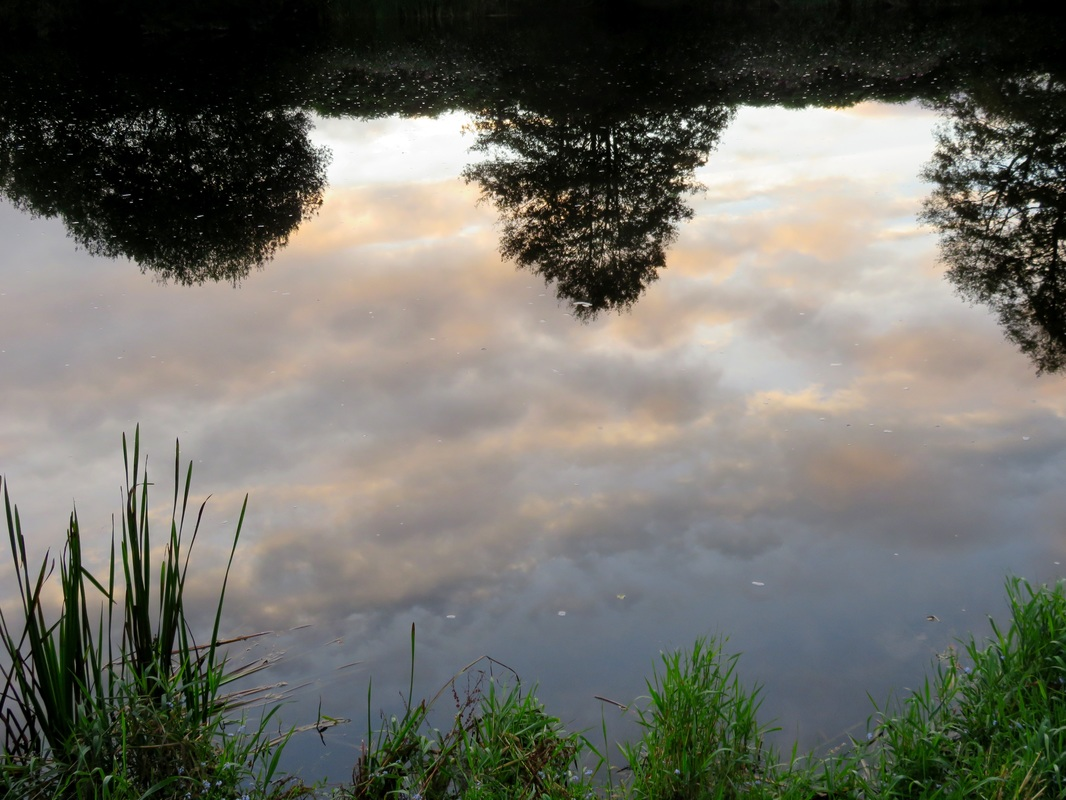 Reflected morning clouds