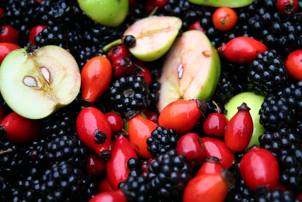 Blackberries, apples, rose hips, hawthorn