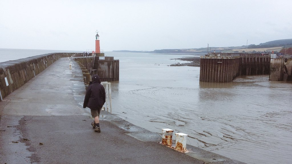 person walking on harbour arm