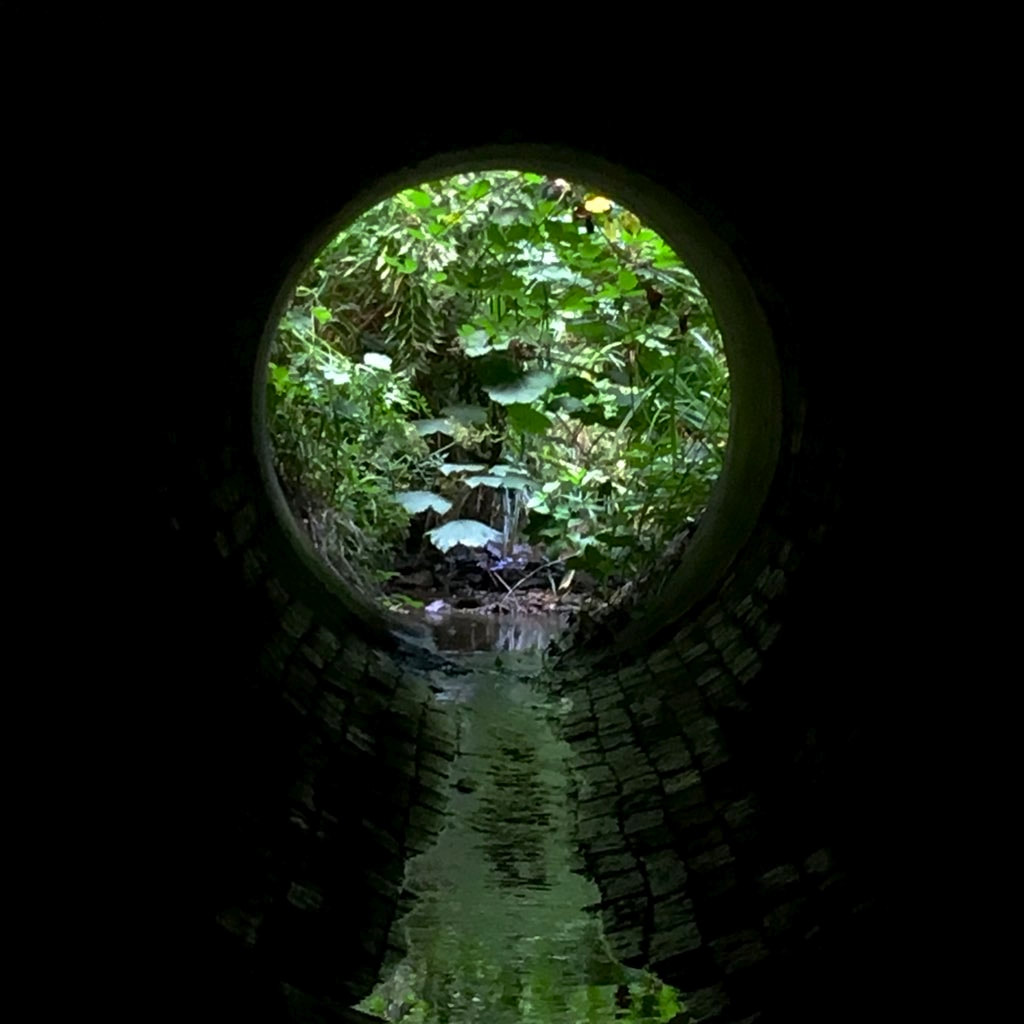 water in culvert