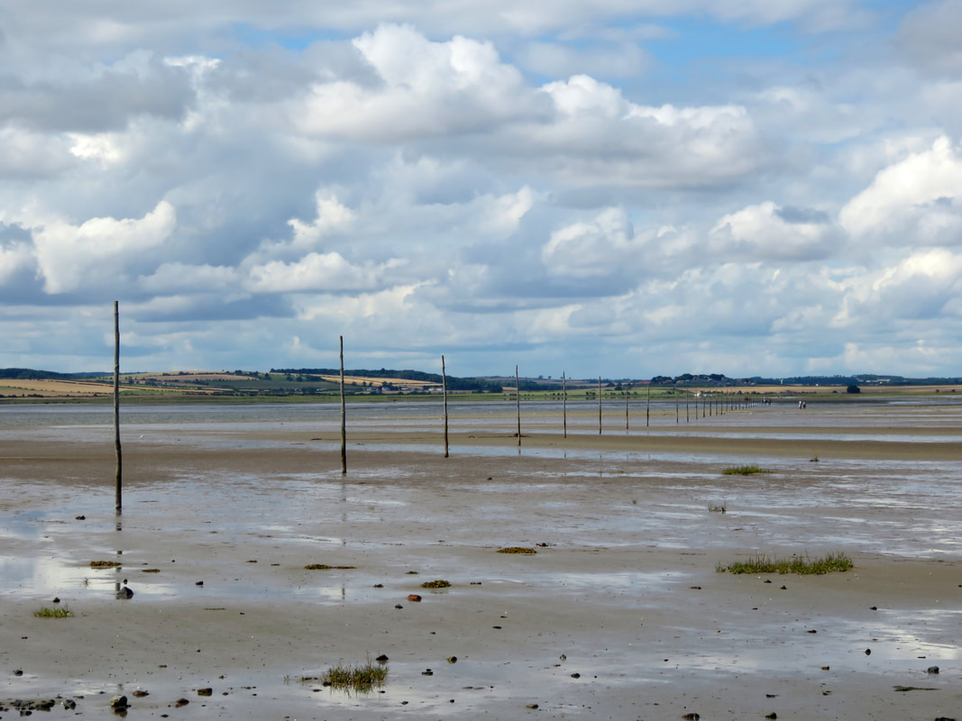 Tidal mudflats with a line of poles