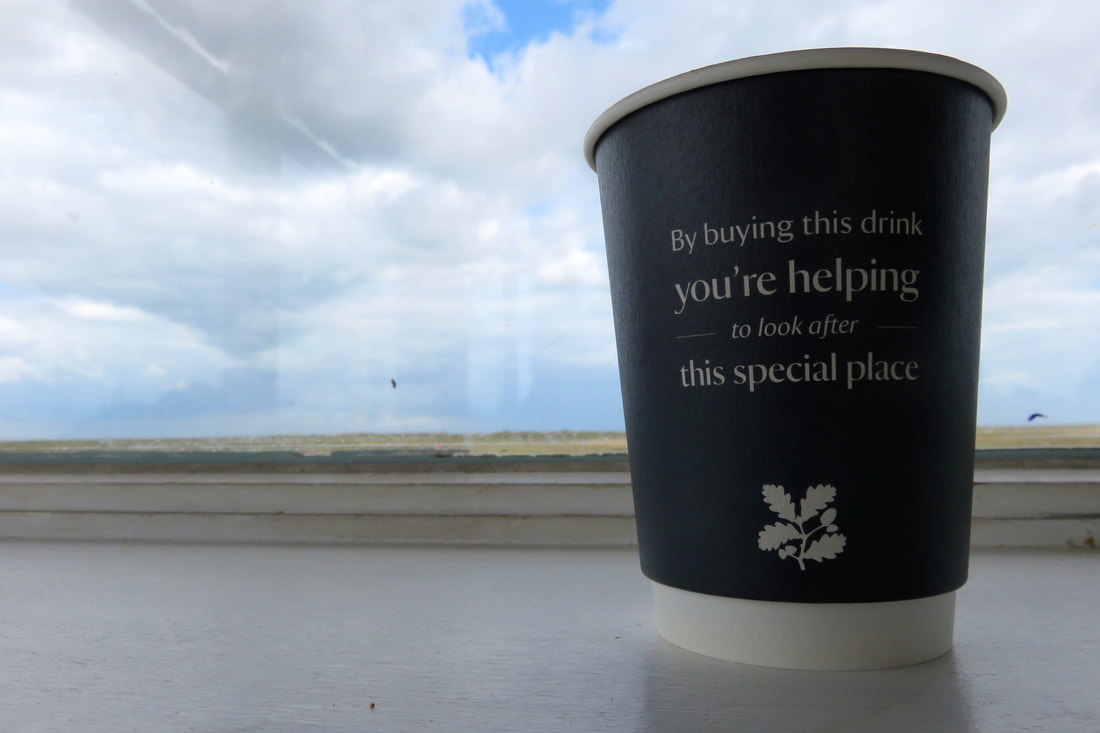 Disposable National Trust branded coffee cup