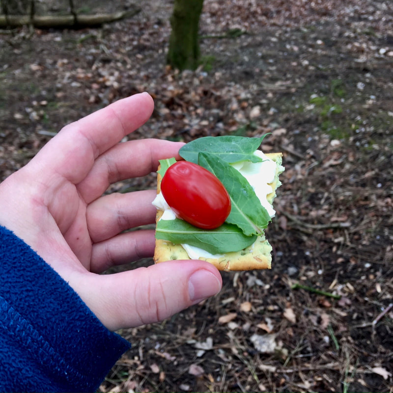 Hand holding cracker with tomato, green leaves and cheese spread on it