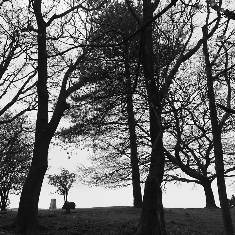 B+W pic with silhouetted trees and a trig point