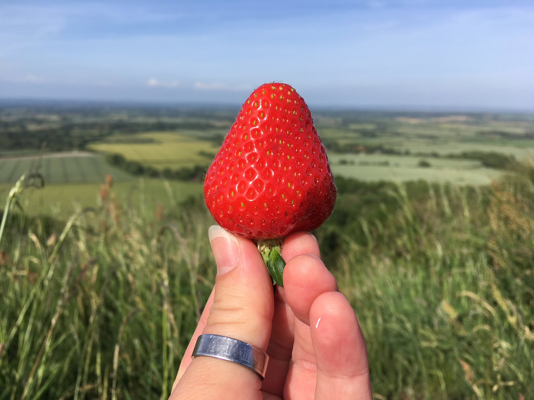 Strawberry and view